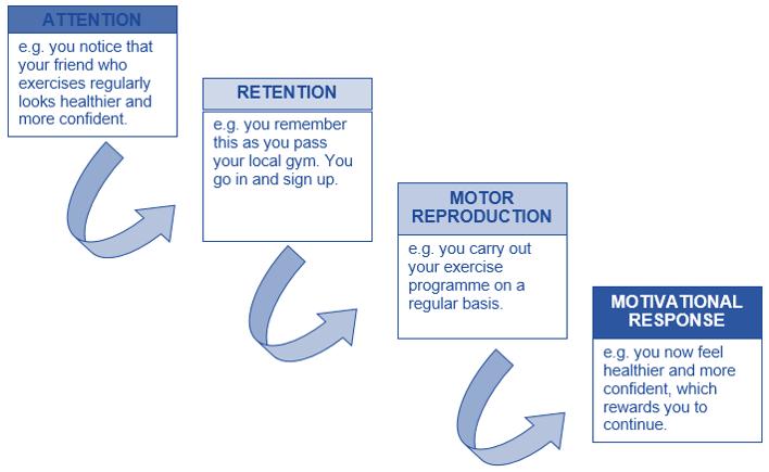 learning and regular exercise program