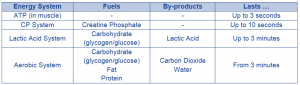 energy systems table