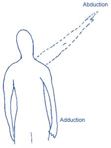 adduct abduct