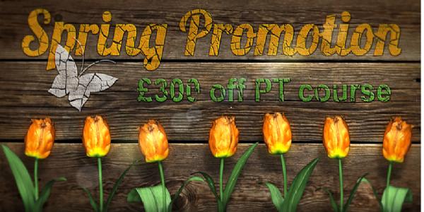 spring-promotion-2017-part-1-banner