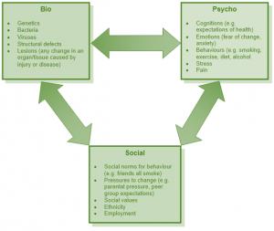 Ogden's biopsychosocial model