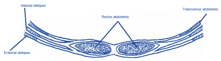 abs cross section