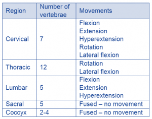 spine region and movement