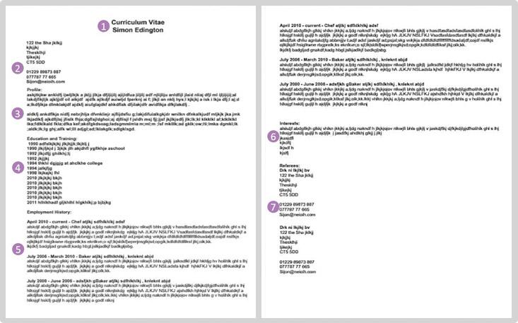 Example CV Screenshot